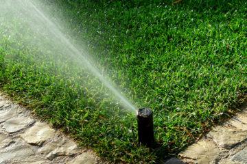 Irrigation & Lighting